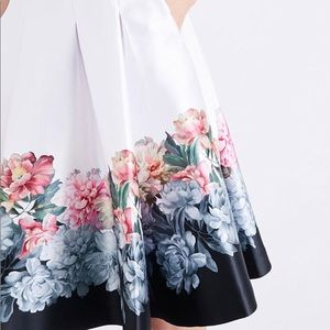 Ted Baker Skirt